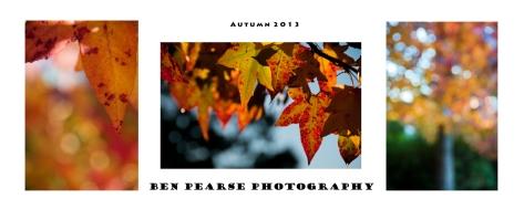Autumn 2013-Triptych