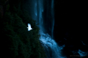 flying by katoomba falls