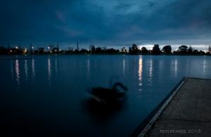 Swan lake- melbourne