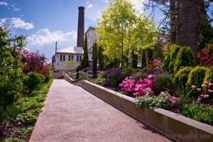 Carrington gardens