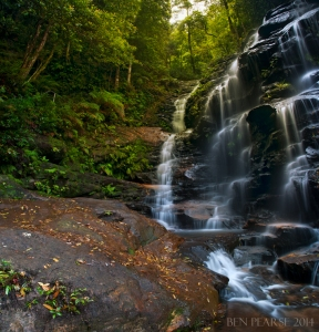 sylvia falls