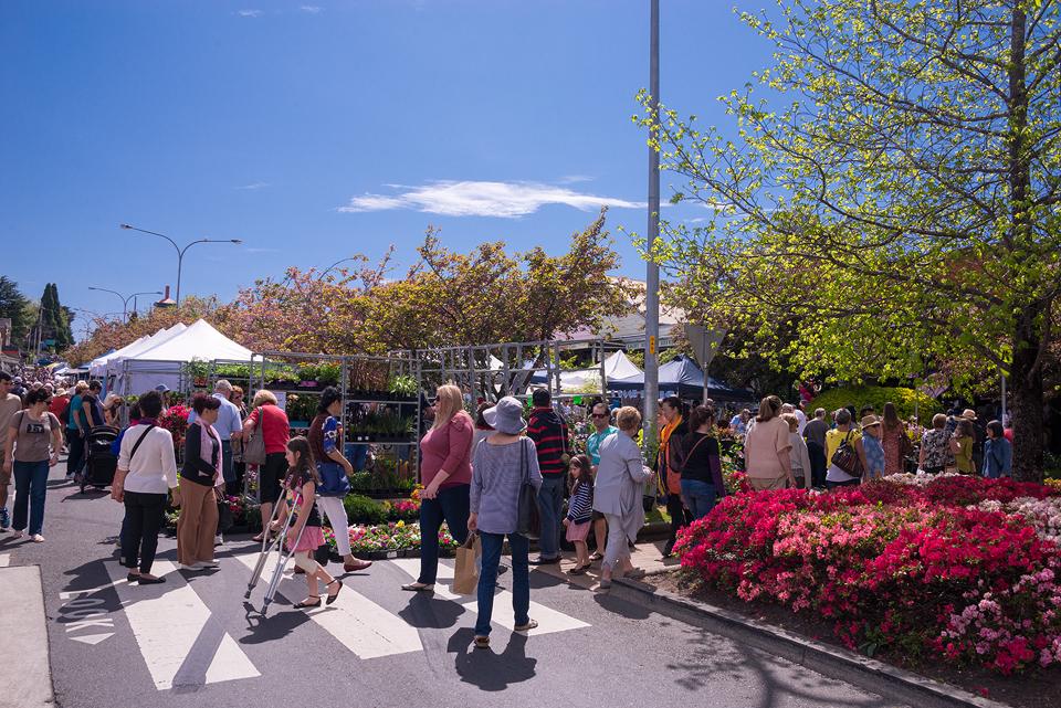 Leura village fair