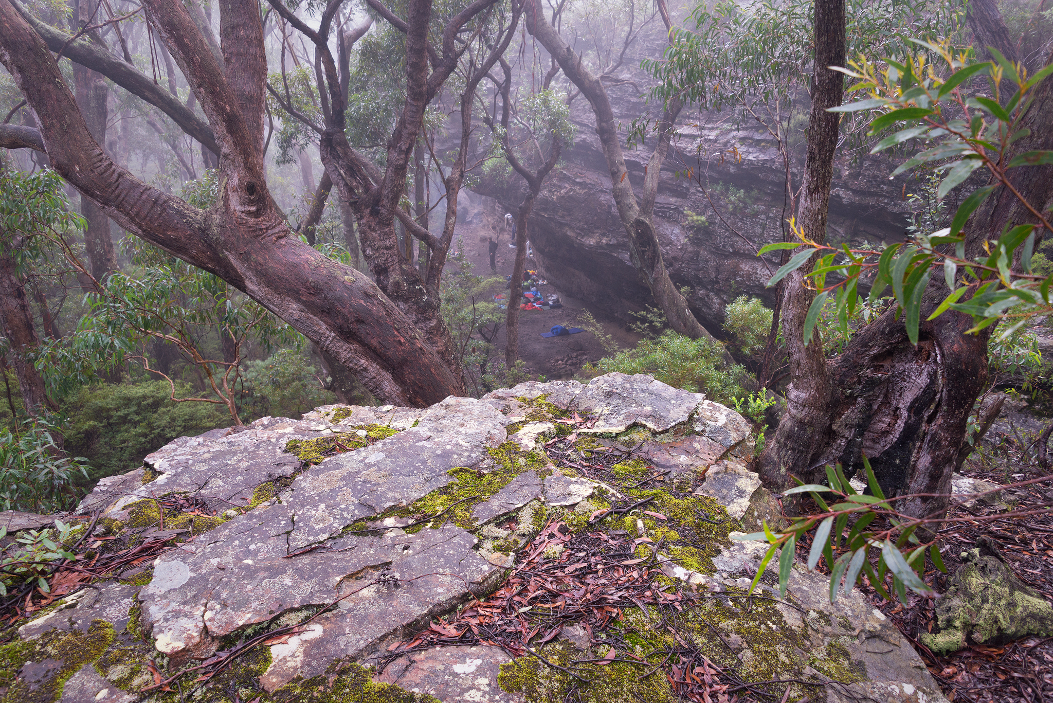 Chinaman's gap in the mist
