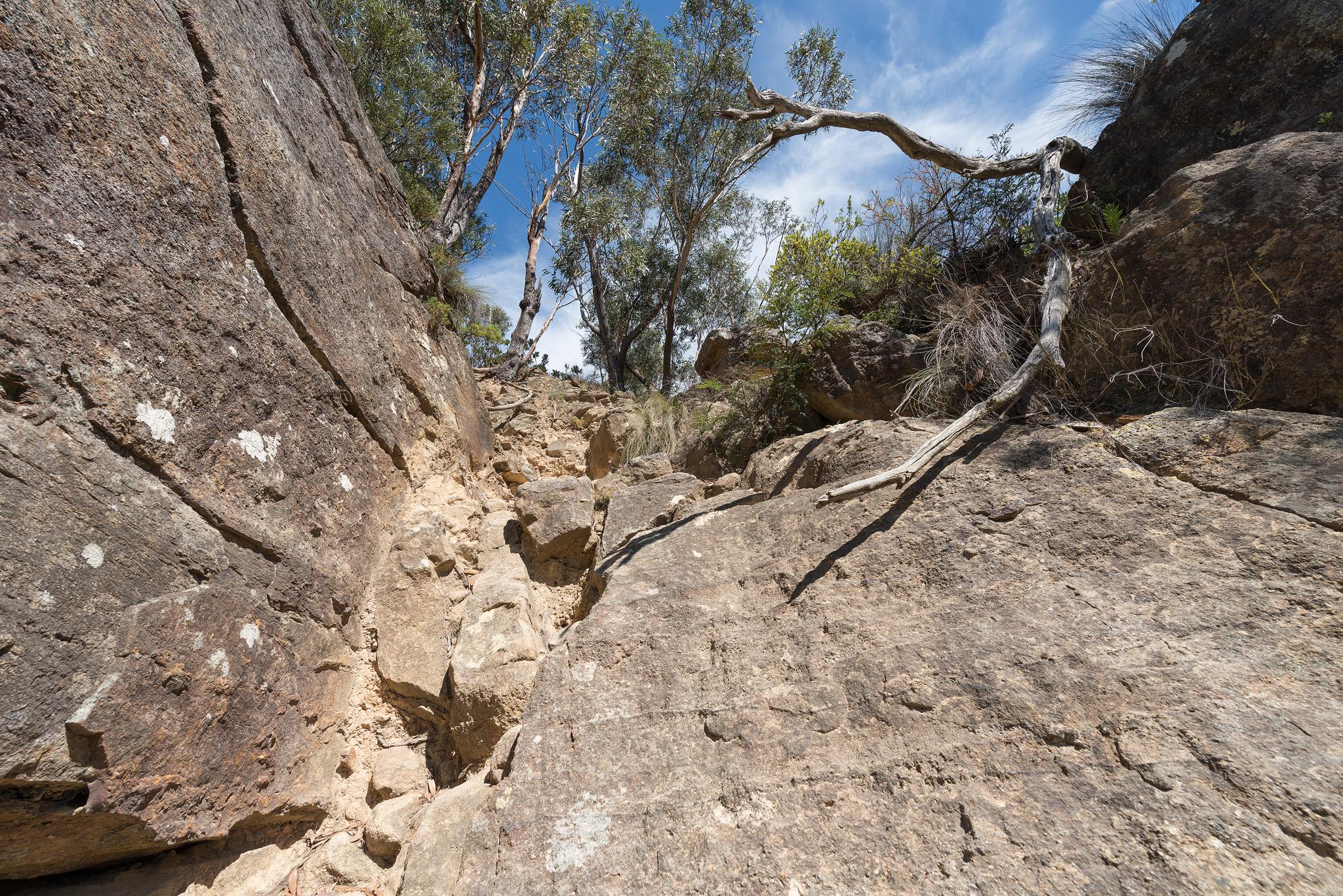 First steep scrample