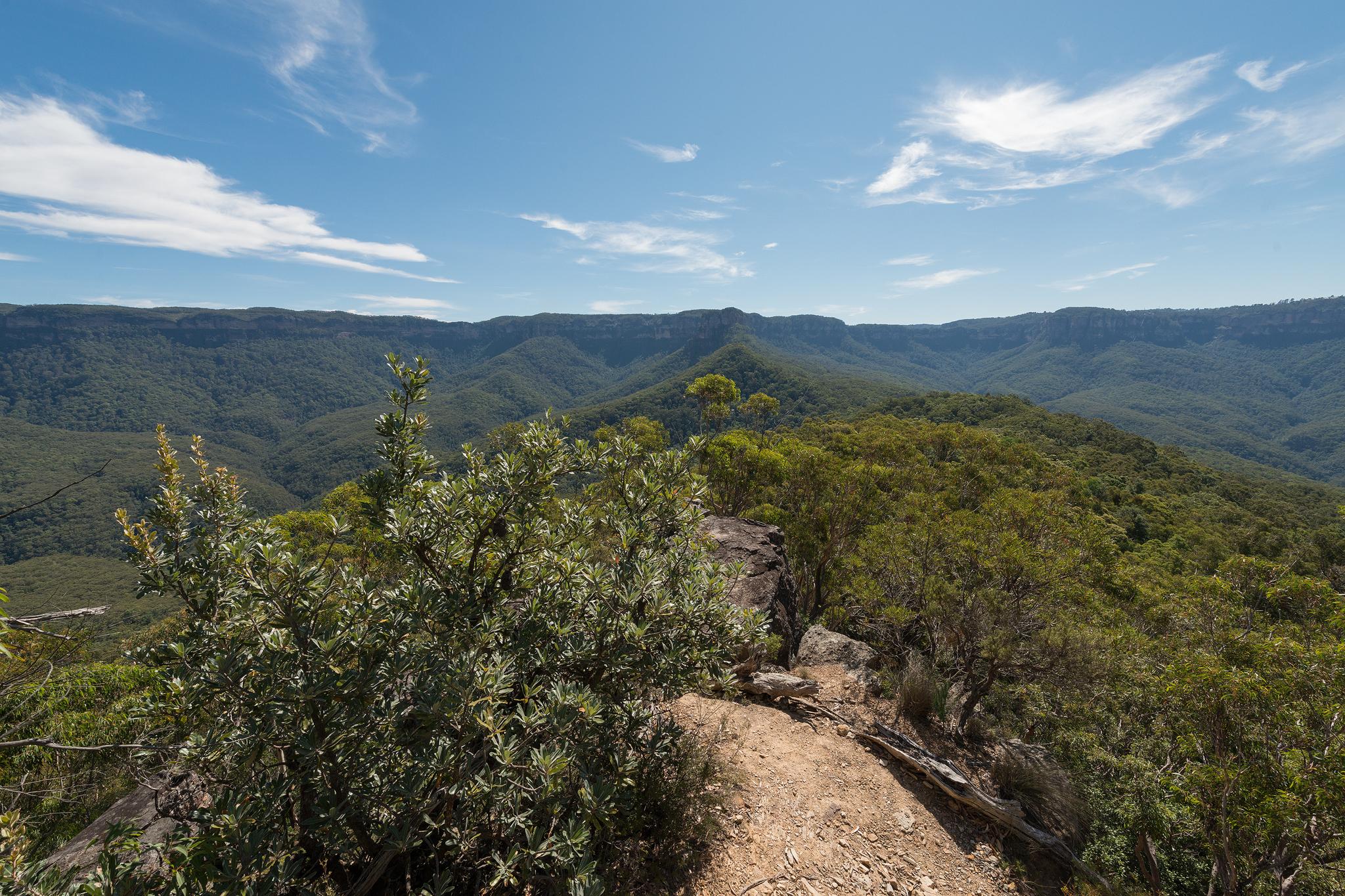 Katoomba cliffline views